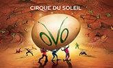 CirqueOVO_165x100.jpg